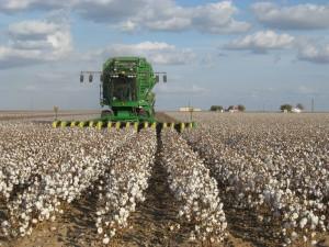 John_Deere_cotton_harvester_kv01-1