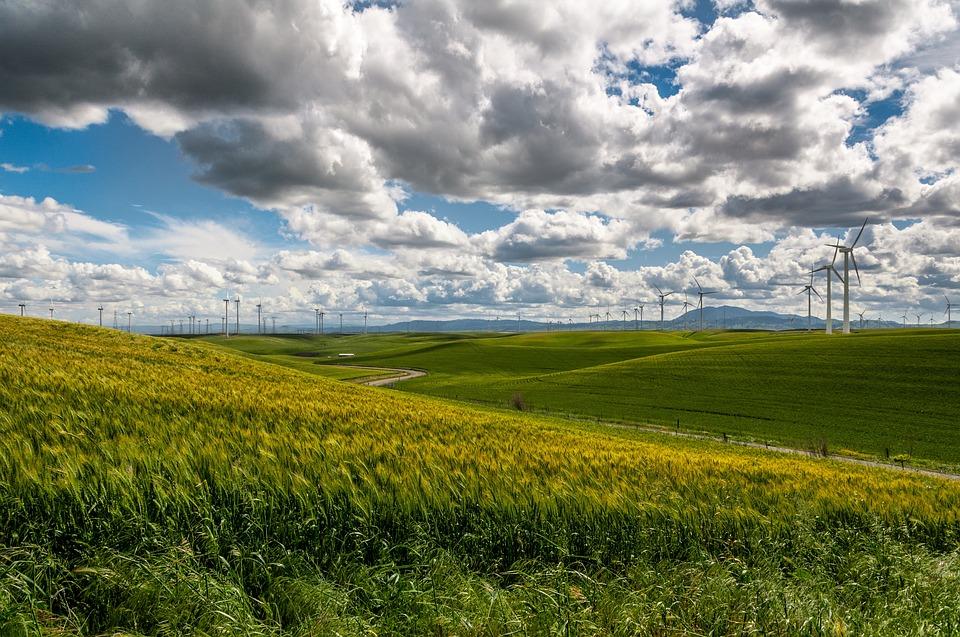 Nordmenn mer opptatt av bærekraft enn resten av Norden
